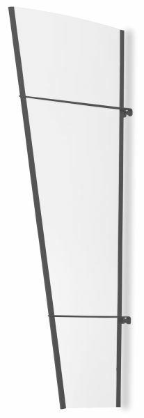 Élément latéral pour auvent marquise de porte LT-Line, 167 x 62 cm, transparent, acier anthracite
